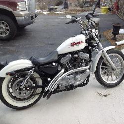 san francisco 615a8 27bef 2000 Harley Davidson Sportster