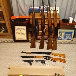 100 + GUNS