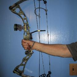 Browning Illusion and Bear Compound Bows