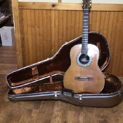 Ovation guitar model 1613; with case