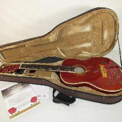 Esteban Rock-On Collection Crystal Rose Acoustic Electric Guitar with Case & Accessories