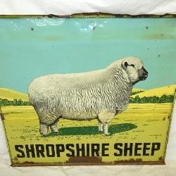 48X42 SHROPSHIRE SHEEP SIGN